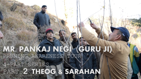 MR. PANKAJ NEGI JI PRUNING AWARENESS TOUR PART-2 | THEOG & SARHAN