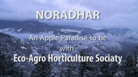 NORADHAR – Eco-Agro Horticulture Society