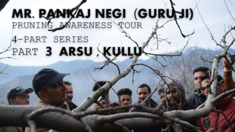 MR. PANKAJ NEGI JI PRUNING AWARENESS TOUR PART-3 | ARSU , KULLU