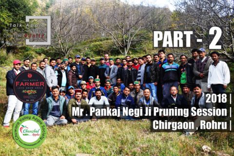 WATCH | 2018 | Mr. Pankaj Negi Ji's Pruning Session | Chirgaon | Rohru | Part 2 | Lets Grow Apple