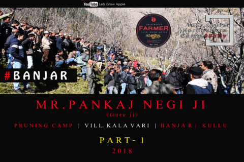 WATCH | Mr. Pankaj Negi ji | Pruning Camp | BANJAR | Kullu  |  2018