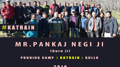 WATCH | Mr. Pankaj Negi ji | Pruning Camp | KATRAIN | KULLU |  Lets Grow Apple