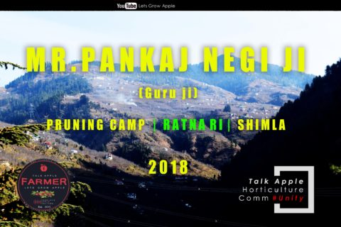 WATCH | Mr. Pankaj Negi ji | Pruning Camp | RATNARI | Shimla |  Lets Grow Apple