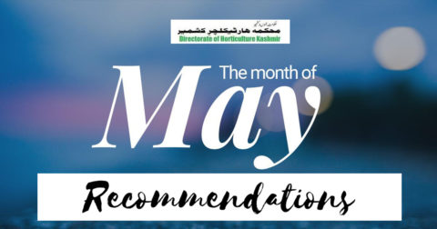 May | Monthly Recommendation For Kashmir | Dir. of Horticulture Kashmir