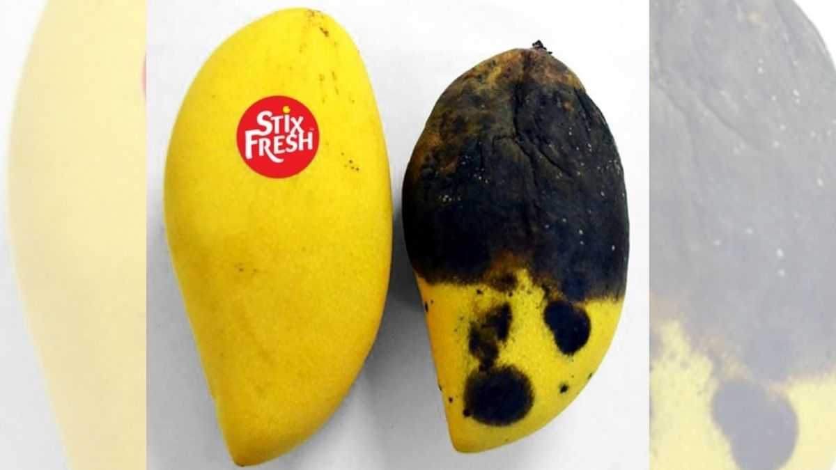 This simple sticker can add an extra 14 days of freshness to your fruits