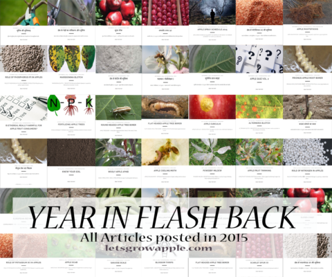 Year 2015 – all Articles
