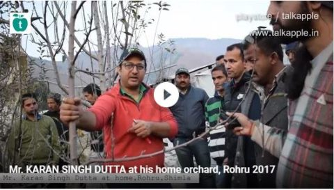 Mr. KARAN SINGH DUTTA at his home orchard, Rohru