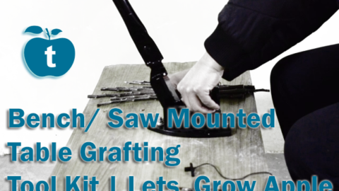Bench/ Saw Mounted Table Grafting Tool Kit | Lets Grow Apple