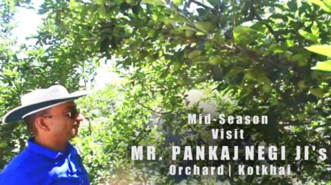 WATCH | Mid season visit to MR. PANKAJ NEGI JI's Orchard