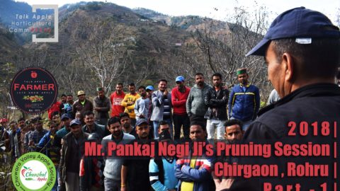 WATCH | 2018 | Mr. Pankaj Negi Ji's Pruning Session | Chirgaon | Rohru | Part 1 | Lets Grow Apple
