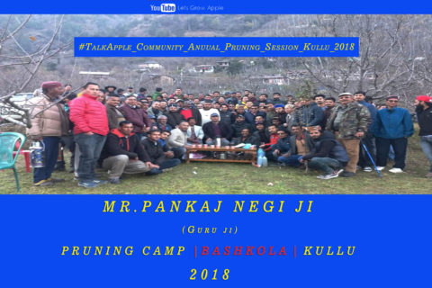 WATCH | Mr. Pankaj Negi ji | Pruning Camp | BASHKOLA | KULLU |  Lets Grow Apple