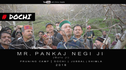 WATCH | Mr. Pankaj Negi ji | Pruning Camp | Dochi | Jubbal  | Shimla | 2018