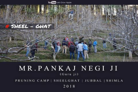 WATCH | 2018 | Mr. Pankaj Negi ji | Pruning Camp | Sheel-Ghat | Jubbal  | Shimla