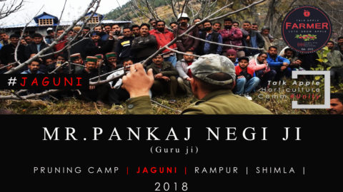 WATCH | Mr. Pankaj Negi ji | Pruning Camp | JAGUNI | RAMPUR | Shimla | 2018