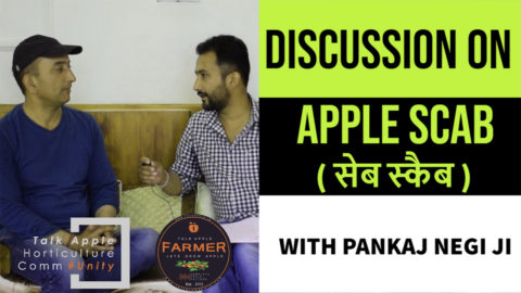 Discussion on Apple Scab ( सेब स्कैब ) | Mr. Pankaj Negi Ji | Lets grow Apple