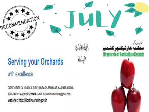 JULY| Monthly Recommendation For Horticulture Kashmir| Dir. of Horticulture Kashmir