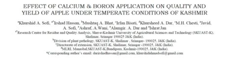 EFFECT OF CALCIUM & BORON APPLICATION ON QUALITY AND YIELD OF APPLE UNDER TEMPERATE CONDITIONS OF KASHMIR