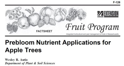 Prebloom Nutrient Applications for Apple Trees