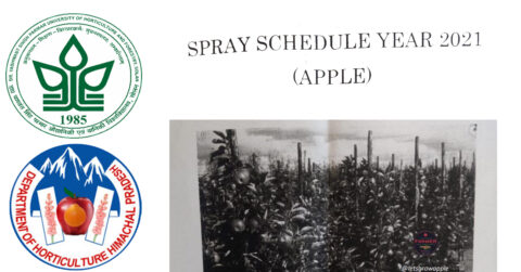 SPRAY SCHEDULE YEAR 2021 (APPLE)(ENGLISH)